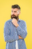 Bearded For Your Pleasure. Bearded Man On Yellow Background. Bearded Hipster Touching His Unshaven C poster