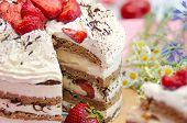 Tiramisu Homemade Cake. Italian Dessert Consisting Of Layers Of Sponge Cake Soaked In Coffee And Bra poster