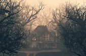 Haunted House Scene In Creepy Forest,3d Illustration poster