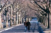 FLUSHING, NY - CIRCA 1999:  A couple walks along a path in Flushing Meadow Corona Park after the yea