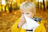 Little Boy Sneezing And Wipes Nose With Napkin During Walking In Autumn Park. Flu Season And Cold Rh poster
