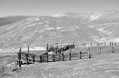pic of chute  - Monotone image of a corral and cattle loading chute on a California ranch - JPG