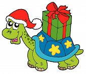 picture of santa claus hat  - Christmas turtle with gift box  - JPG