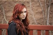 Young Woman With Beautiful Auburn Hair poster