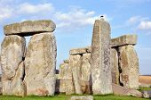 foto of stonehenge  - The Stonehenge  - JPG