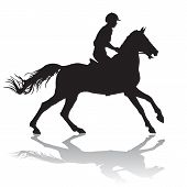 picture of horse-riders  - Rider - JPG