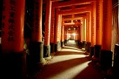 stock photo of inari  - Walking up the famous Fushimi Inari path - JPG
