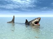 stock photo of great white shark  - Computer generated 3D illustration with a Great White Shark - JPG