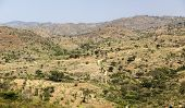 picture of ethiopia  - African landscape - JPG