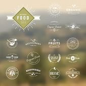 stock photo of food logo  - Set of vintage style elements for labels and badges for natural food and drink - JPG