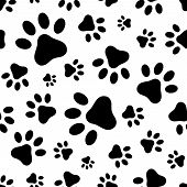 image of animal footprint  - Vector seamless pattern with black animal paws footprints on a white background - JPG