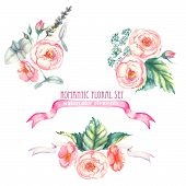 stock photo of composition  - Hand drawn watercolor  isolated romantic floral compositions with pink roses - JPG