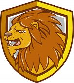 image of lions-head  - Illustration of an angry lion big cat head roaring viewed from the side set inside shield crest on isolated background done in cartoon style - JPG