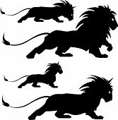 picture of lion  - vector illustration of varios lion silhoettes - JPG