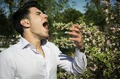 stock photo of hay fever  - Attractive young man next to flowers sneezing because of hay - JPG