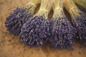 stock photo of stall  - Bunches of lavender on a market stall in Provence France - JPG