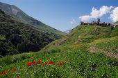 Alpes Summer Landscape poster