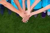 pic of joining hands  - People joining their hands  on green grass  - JPG