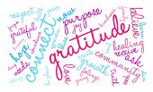 foto of gratitude  - Gratitude word coud on a white background - JPG