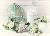 picture of caged  - Postcard with tender applwwe blossom and candle in decorative bird cage on white painted wooden planls - JPG