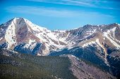 picture of monarch  - the colorado rocky mountains near monarch pass  - JPG