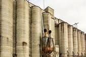 picture of silos  - a Large farm with many industrial silos - JPG