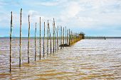 picture of tide  - fishing nets at low tide in Thailand - JPG