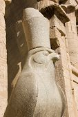 picture of horus  - Ancient Egyptian statue of the hawk headed god Horus wearing the Pharaoh - JPG