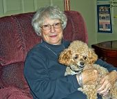 foto of elderly woman  - elderly woman with a poodle on her lap - JPG
