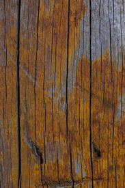 stock photo of wooden fence  - the colour and texture of a part of an old wooden fence - JPG