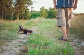 German Shepherd Puppy Sits And Obediently Looks At The Owner During A Training poster