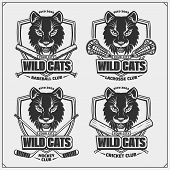 Baseball, Lacrosse, Cricket And Hockey Logos And Labels. Sport Club Emblems With Wild Cat. Print Des poster