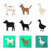 Vector Illustration Of Breeding And Kitchen Logo. Set Of Breeding And Organic Stock Symbol For Web. poster