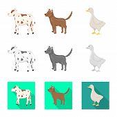 Isolated Object Of Breeding And Kitchen Icon. Collection Of Breeding And Organic Vector Icon For Sto poster