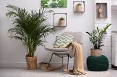 Stylish Modern Room Interior With Exotic Houseplants poster