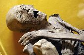 foto of mortuary  - egyptian mummy - JPG