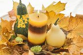 stock photo of fall decorations  - Autumn decoration - JPG