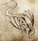 stock photo of woman dragon  - Sketch of tattoo art - JPG