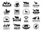 Farm Animals. Business Logo With Domestic Animals Cow Chicken Goat Healthy Food Symbols Vector Farm  poster