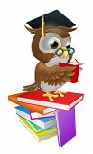 stock photo of convocation  - An illustration of a wise owl on a stack of books reading wearing spectacles and a mortar board graduate cap - JPG