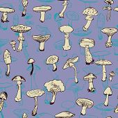 stock photo of morchella mushrooms  - Seamless pattern with mushrooms - JPG