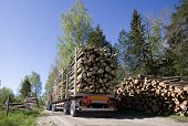 stock photo of logging truck  - Truck with timber in the forest - JPG