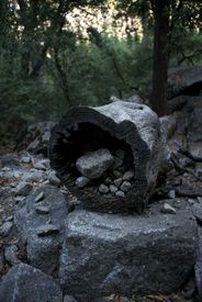 picture of hollow log  - Hollow log filled with stones in Yosemite - JPG