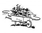 pic of wheelbarrow  - Wheelbarrow Full Of Flowers  - JPG