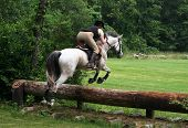 picture of horse riding  - girl on horse jumping - JPG