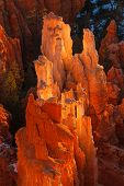 pic of hoodoo  - Bryce Canyon National Park Hoodoos Sunrise Utah - JPG