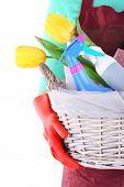 picture of spring-cleaning  - Housewife holding basket with cleaning equipment - JPG