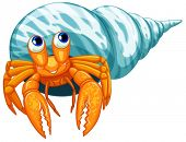 pic of hermit  - Illustration of a closeup hermit crab - JPG
