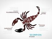 pic of venomous animals  - Animal concept infographic template with scorpion made out of puzzle pieces - JPG