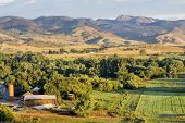 stock photo of collins  - irrigated foothills farmland in sunrise light - JPG